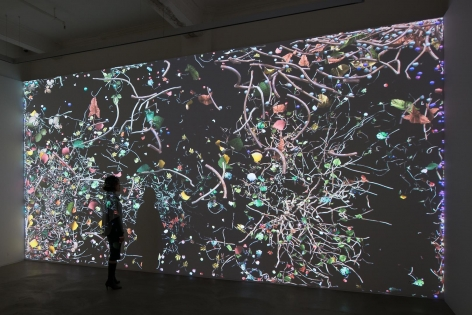 Jennifer Steinkamp: Diaspore Installation view 4