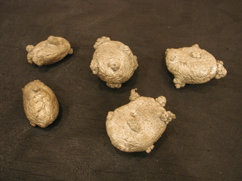 ANYA GALLACCIO, 5 potatoes- (Earth, My Likeness), 2001