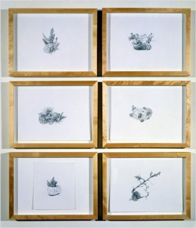 Six potatoes drawn- (belief in an immaculate being) , 2001