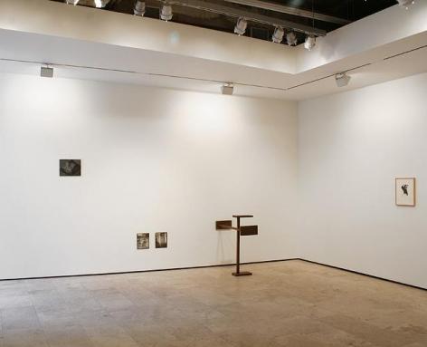 DUET, Installation View