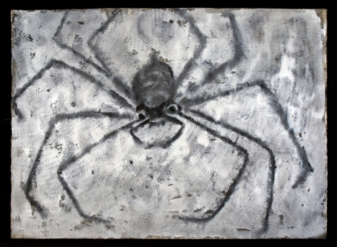 Francisco-Toledo-Spider