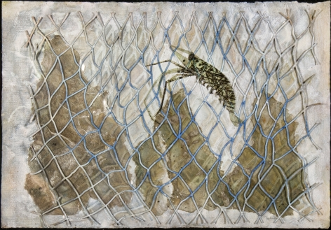 Francisco-Toledo-Shrimp-in-Net