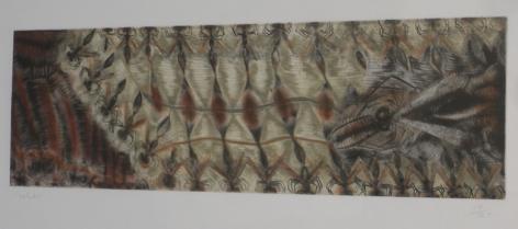 Francisco-Toledo-Insectos