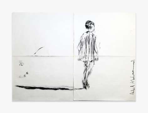 Adel Abdessemed Shadow, 2015