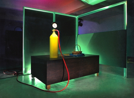Mike Kelley Kandor 13, 2007