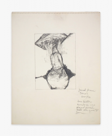 Betty Tompkins Fuck Drawing November 1972