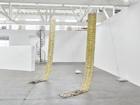 Installation view of snake with sexual interest in own tail, Los Angeles, Venus Over Los Angeles, 2016