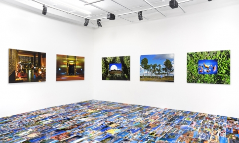 "Installation view of ""Michel Houellebecq: French Bashing."" Courtesy of Venus."