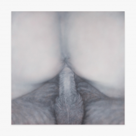 Betty Tompkins Fuck Painting #47