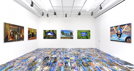 Installation View of Michel Houellebecq: French Bashing at Venus, New York