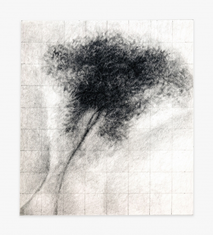 Betty Tompkins Cunt Grid #13 (Courbet)