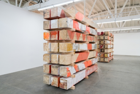 Installation view of Marianne Vitale, Los Angeles, Venus Over Los Angeles, 2016