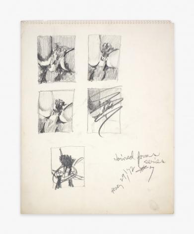 Betty Tompkins Fuck Drawing #7