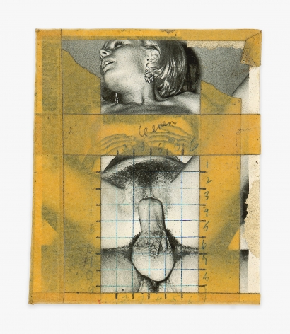 Betty Tompkins Collage #5