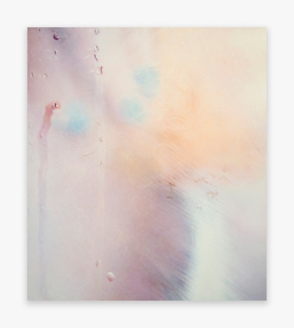 Marilyn Minter Tender, 2016