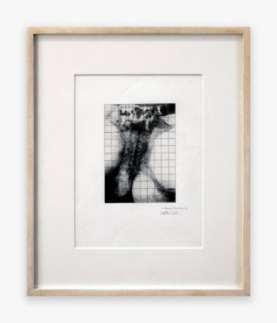 Betty Tompkins Cow Cunt Grid #2, 1974