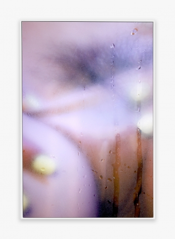 Marilyn Minter 27, 2014