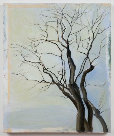Sylvia Plimack Mangold, The Locust Trees 2/87