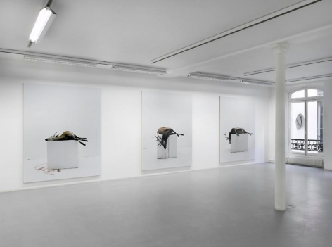 Eric Poitevin– installation view 5