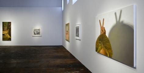 Catherine Murphy: Recent Work– installation view 9