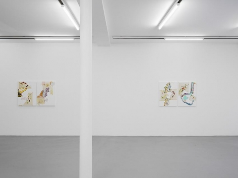 Pia Fries: Merian's Surinam– installation view 4