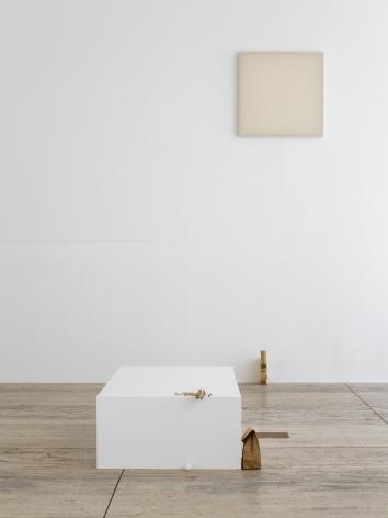 Fernanda Gomes, Museo Jumex, Mexico City