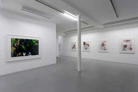 James Welling – installation view 5