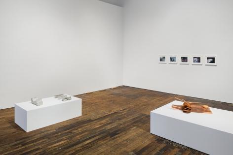 Lucy Skaer: Sentiment, Peter Freeman, Inc., New York.