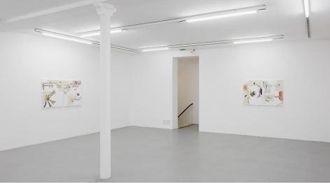 Pia Fries: Merian's Surinam– installation view 11