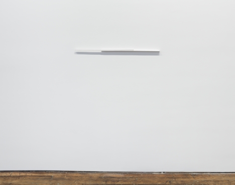 Fernanda Gomes Untitled
