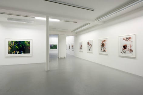 James Welling – installation view 2