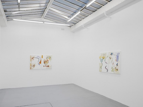 Pia Fries: Merian's Surinam– installation view 5