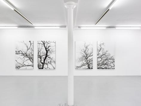 Eric Poitevin – installation view 7