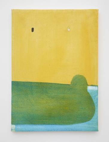 Merlin James, Untitled (Yellow)