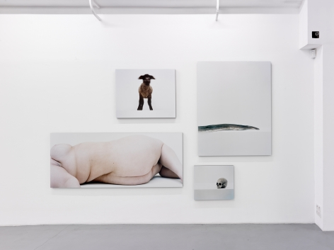 Eric Poitevin – installation view 6