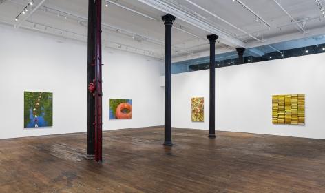 Catherine Murphy: Recent Work– installation view 5