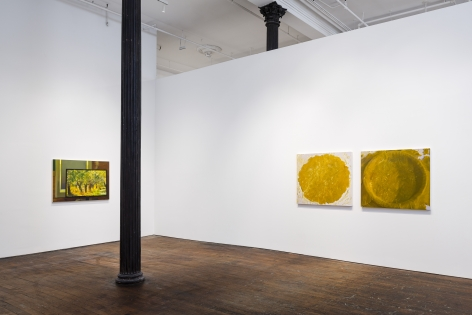 Catherine Murphy: Recent Work– installation view 2