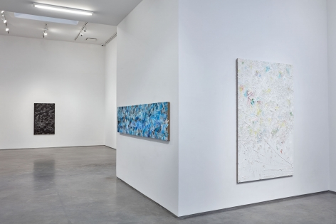 whatever, a vibrant holiday(Installation View), Boesky Gallery, 2016
