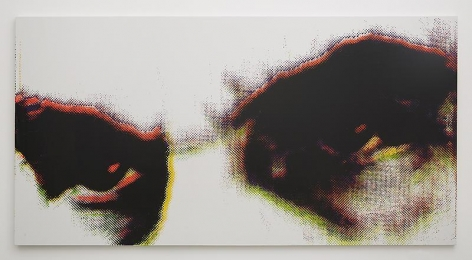 Untitled, 2013, Silkscreen ink on canvas