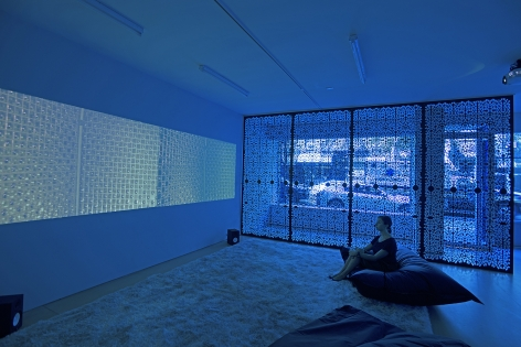 The Blue Lenses (Installation View), 20 Clinton Street 2015