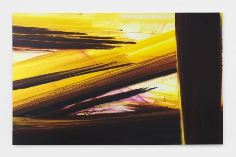 Barnaby Furnas flood painting in yellow