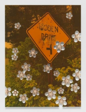 Lot 082616 (hidden drive), 2016, Pigmented epoxy resin, archival inkjet print on wood panel support with steel hardware
