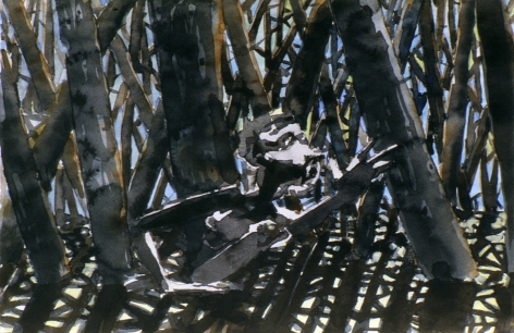 Spook, August 20, 2001, Watercolor on paper