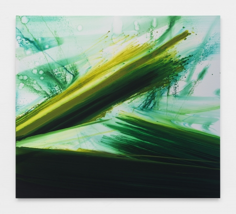Barnaby Furnas, flood painting in green