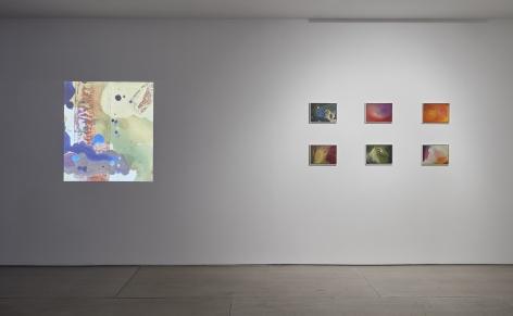 Jacco Olivier(Installation View), 20 Clinton Street, 2016