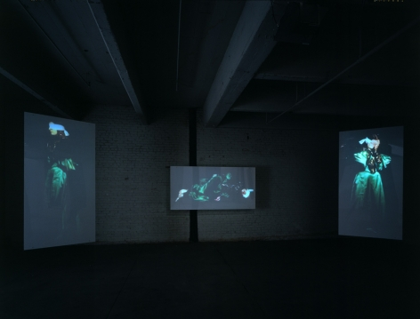 Ich Heibe (My Name Is) Rosa Luxemburg(Installation View), Five channel video projection and sound installation. Front and back panels: 8 translucent plexi-glass panels.