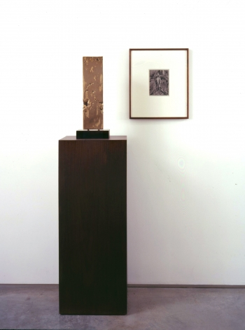 installation with photograph and rectangular sculpture by anthony pearson