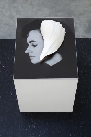 photograph of a woman's profile on a pedestal