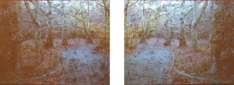 Gold / Tupelo Plains, 2003, Video projection, oil and enamel on linen