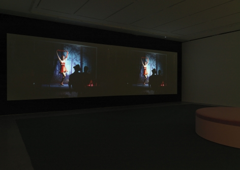 The White Wolf (Installation View)